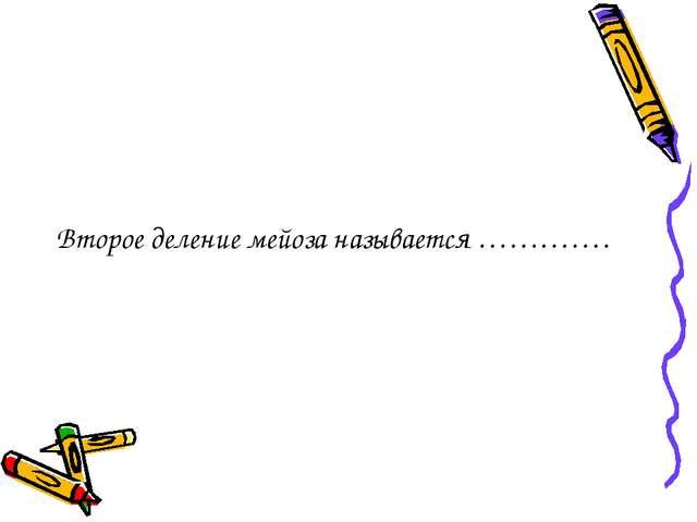Второе деление мейоза называется ………….
