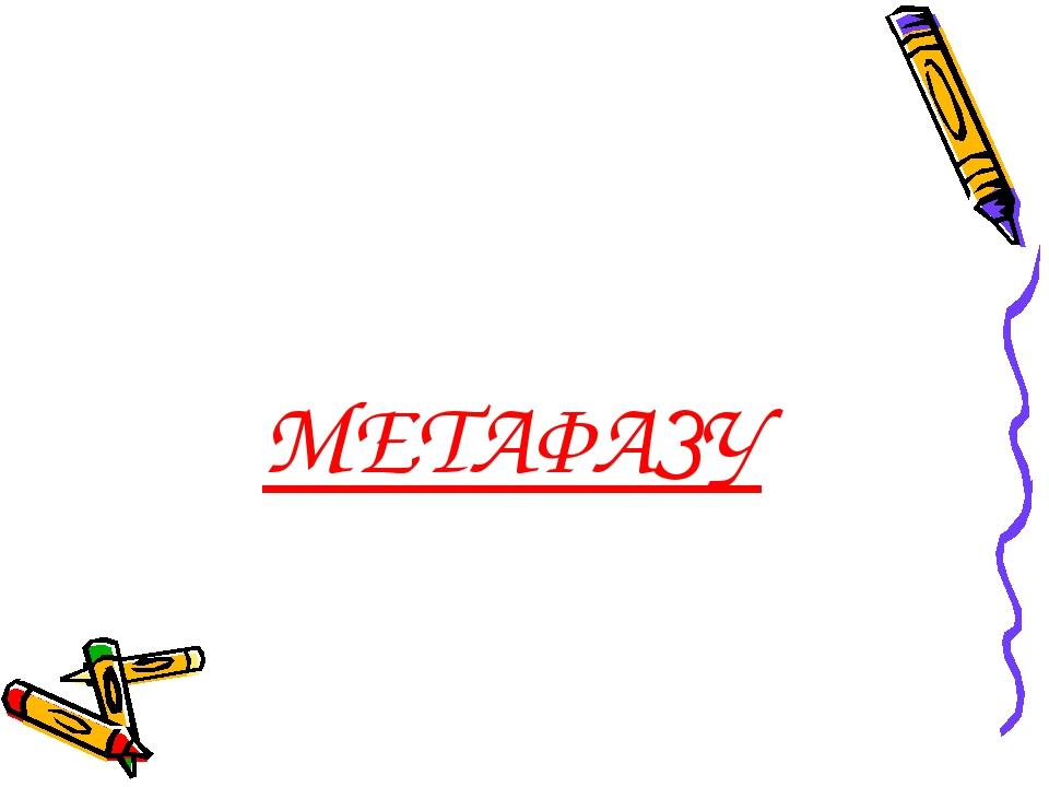 МЕТАФАЗУ
