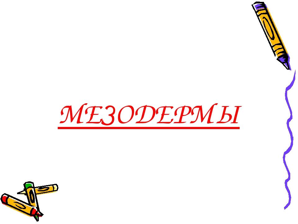 МЕЗОДЕРМЫ