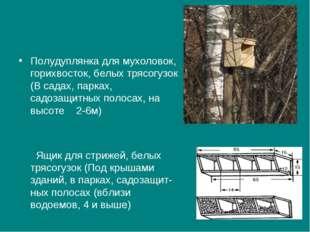 Полудуплянка для мухоловок, горихвосток, белых трясогузок (В садах, парках,