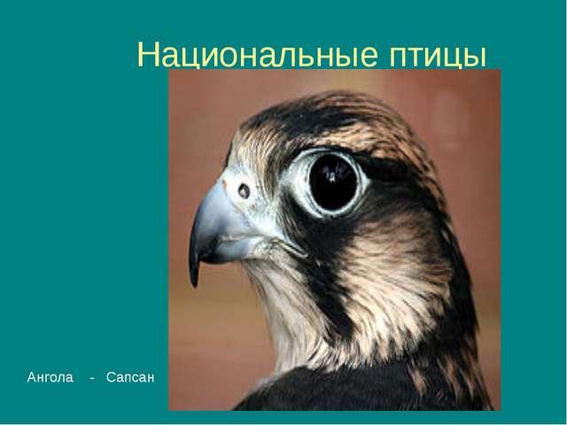 Национальные птицы Деревенская ласточка - Австрия Ангола - Сапсан
