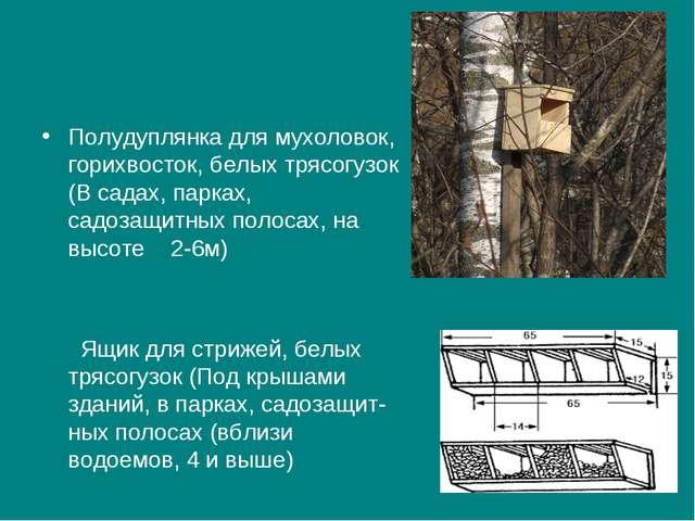 Полудуплянка для мухоловок, горихвосток, белых трясогузок (В садах, парках,...