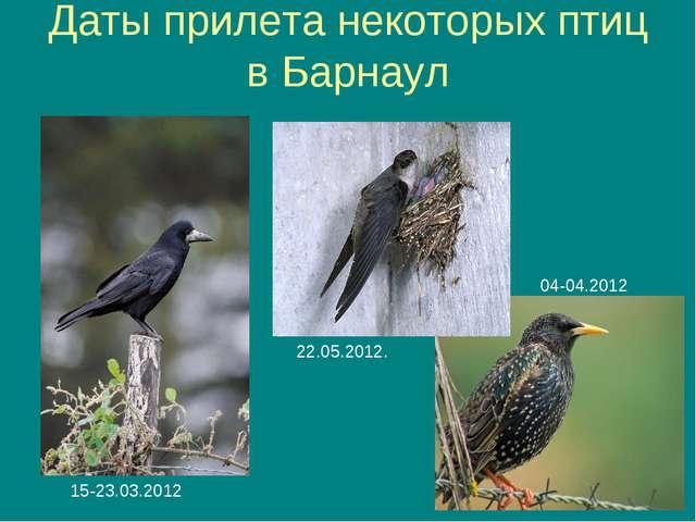 Даты прилета некоторых птиц в Барнаул 04-04.2012 15-23.03.2012 22.05.2012.