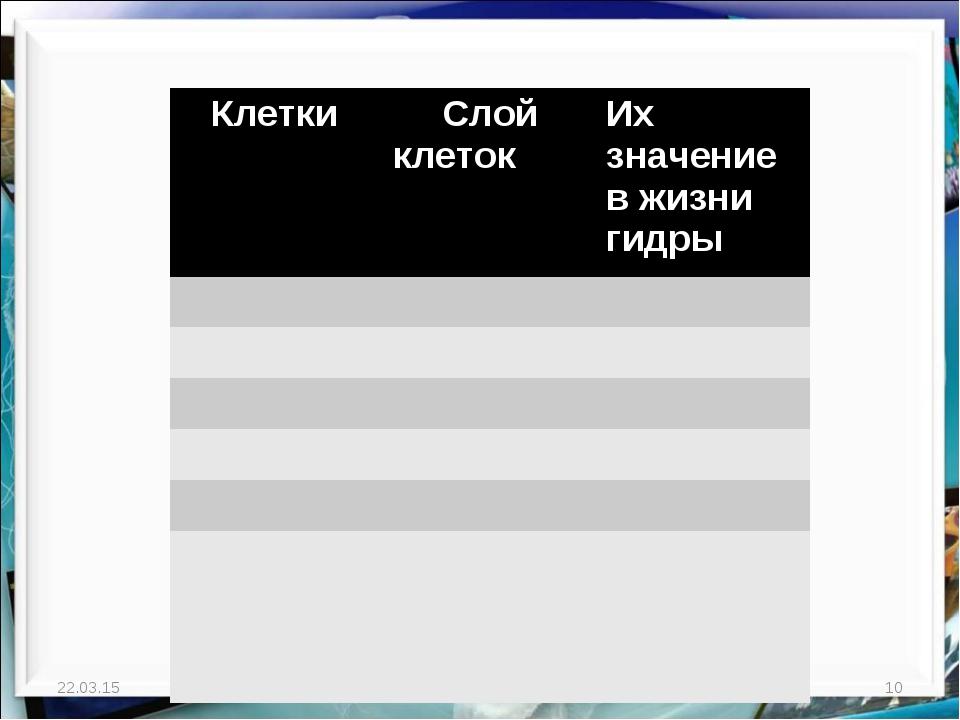 * http://aida.ucoz.ru * Клетки Слой клетокИх значение в жизни гидры...