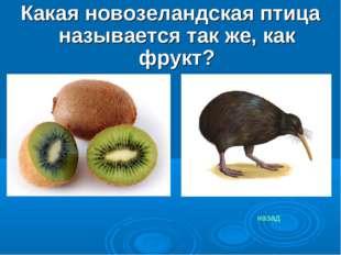 Какая новозеландская птица называется так же, как фрукт? назад
