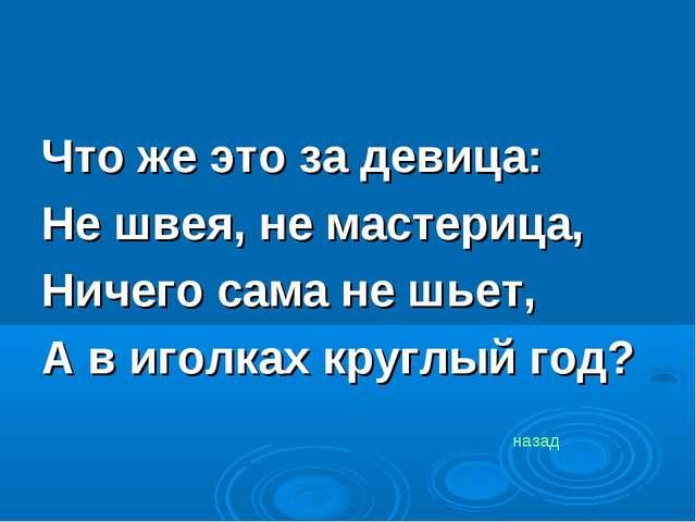 Что же это за девица: Не швея, не мастерица, Ничего сама не шьет, А в иголка...