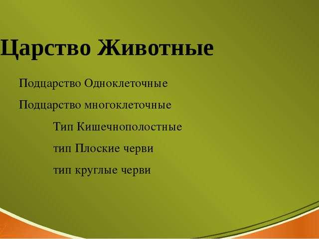 Царство Животные Подцарство Одноклеточные Подцарство многоклеточные Тип Кишеч...