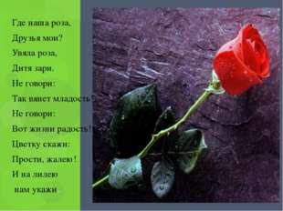 Где наша роза, Друзья мои? Увяла роза, Дитя зари. Не говори: Так вянет младо