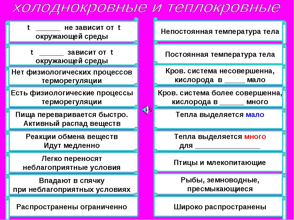 t ______ не зависит от t окружающей среды t ______ зависит от t окружающей с...