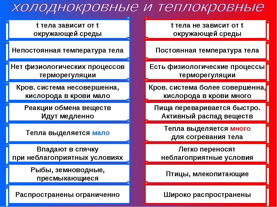 t тела зависит от t окружающей среды Непостоянная температура тела Нет физиол...