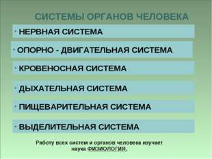 СИСТЕМЫ ОРГАНОВ ЧЕЛОВЕКА НЕРВНАЯ СИСТЕМА ОПОРНО - ДВИГАТЕЛЬНАЯ СИСТЕМА КРОВЕН