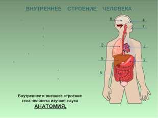 ВНУТРЕННЕЕ СТРОЕНИЕ ЧЕЛОВЕКА Внутреннее и внешнее строение тела человека изуч