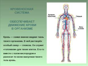Кровь — самая важная жидкая ткань твоего организма. В ней растворён особый са
