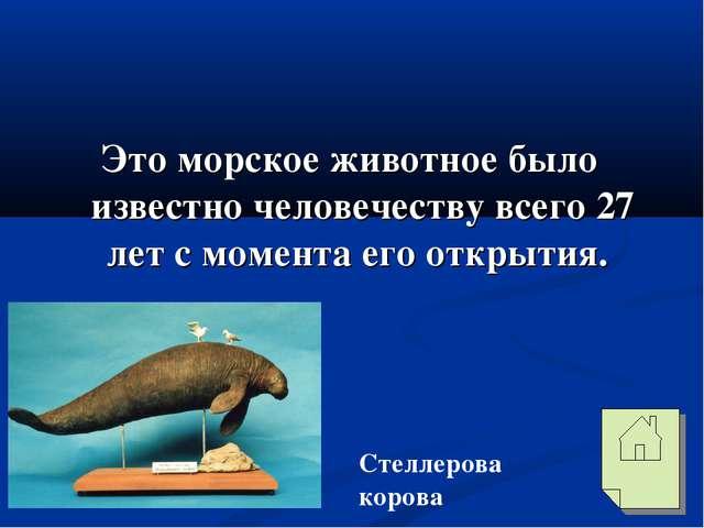 Это морское животное было известно человечеству всего 27 лет с момента его о...