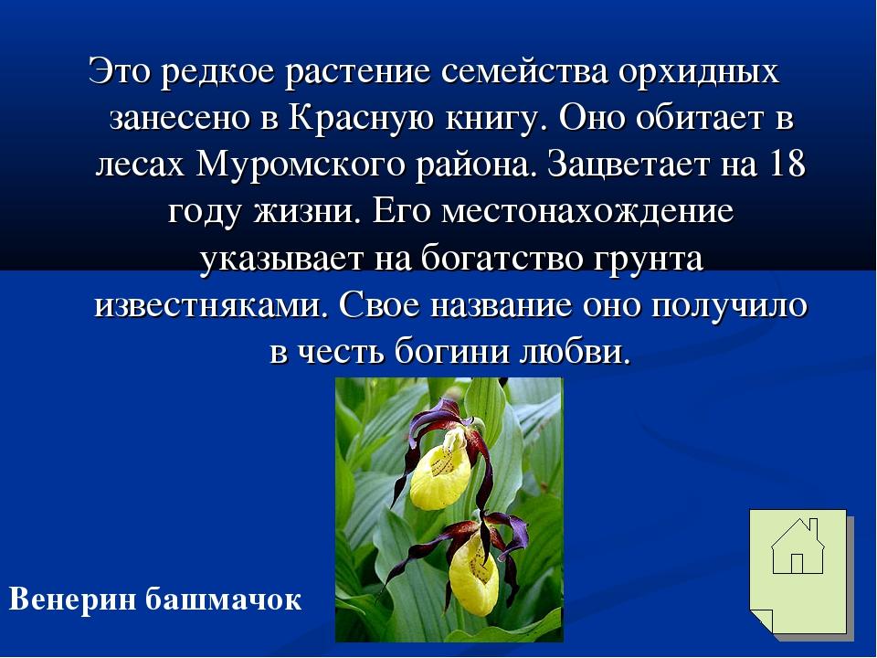Это редкое растение семейства орхидных занесено в Красную книгу. Оно обитает...