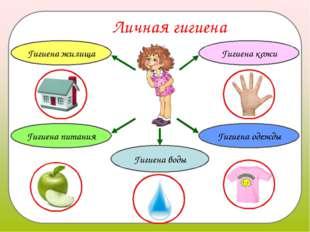 Личная гигиена Гигиена кожи Гигиена питания Гигиена одежды Гигиена воды Гигие