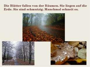 Die Blätter fallen von der Bäumen. Sie liegen auf die Еrde. Sie sind schmutzi