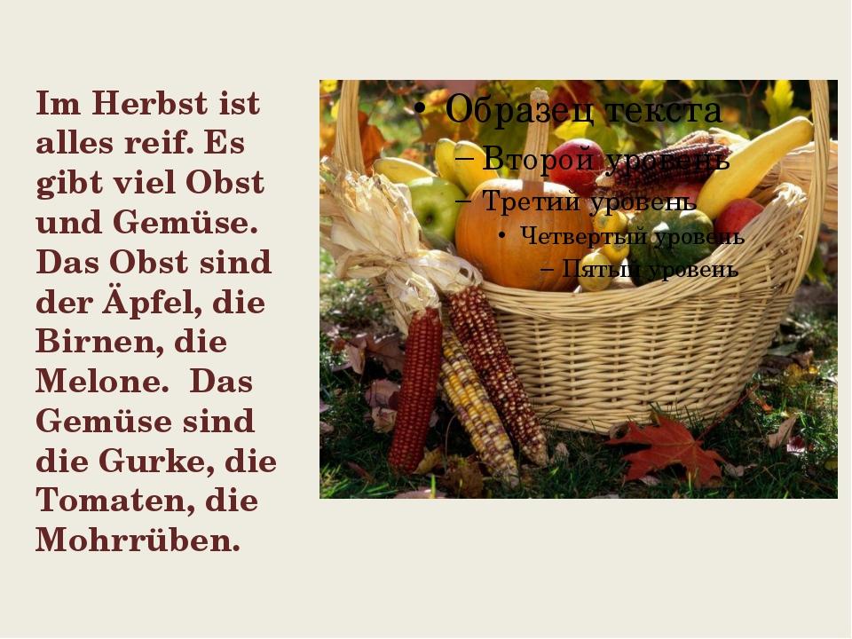 Im Herbst ist alles reif. Es gibt viel Obst und Gemüse. Das Obst sind der Äpf...