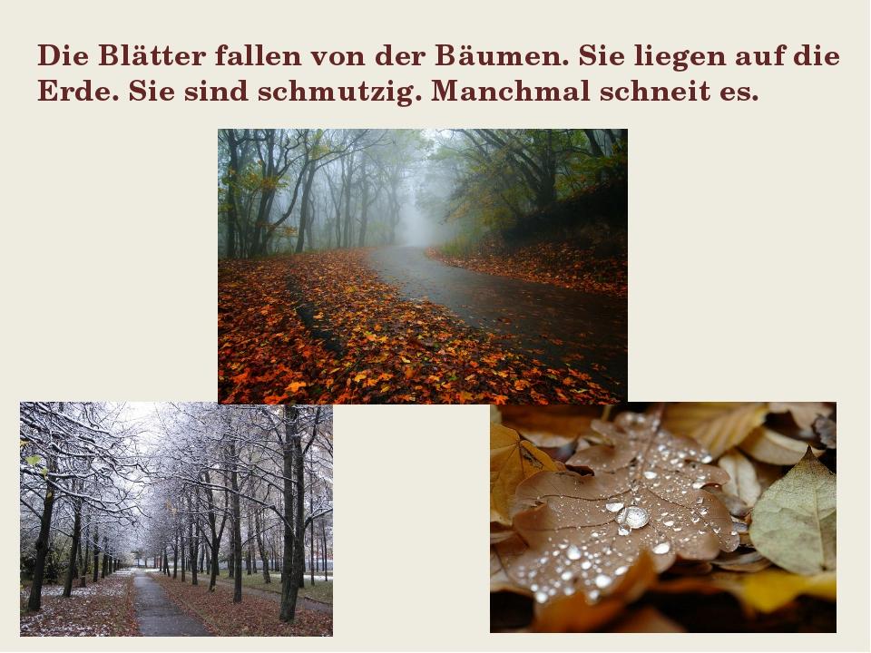 Die Blätter fallen von der Bäumen. Sie liegen auf die Еrde. Sie sind schmutzi...