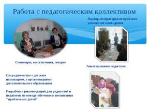 Работа с педагогическим коллективом Семинары, выступления, лекции Анкетирован