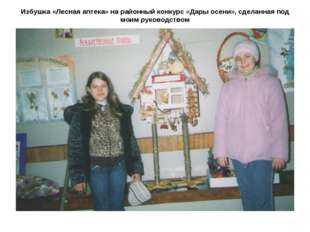 Избушка «Лесная аптека» на районный конкурс «Дары осени», сделанная под моим