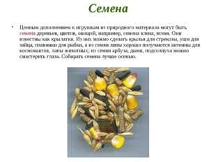 Семена Ценным дополнением к игрушкам из природного материала могут быть семен