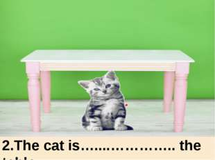 under 2.The cat is…....………….. the table. under