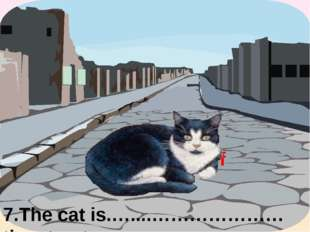 7.The cat is.…....…………………the street. in the middle of