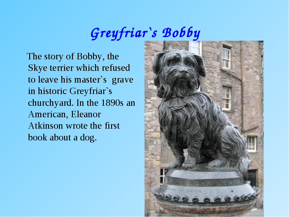 Greyfriar`s Bobby The story of Bobby, the Skye terrier which refused to leave...