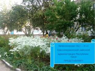 Зеленонивская ОШ I – III ст. Красноперекопской районной администрации Респуб