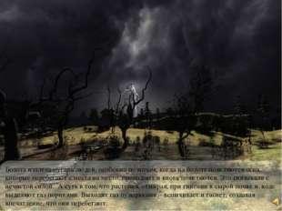 Болота издавна пугали людей, особенно по ночам, когда на болоте появляются ог