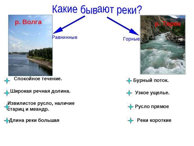 Равнинные Горные р. Волга р. Терек Спокойное течение. Бурный поток. Широкая р...