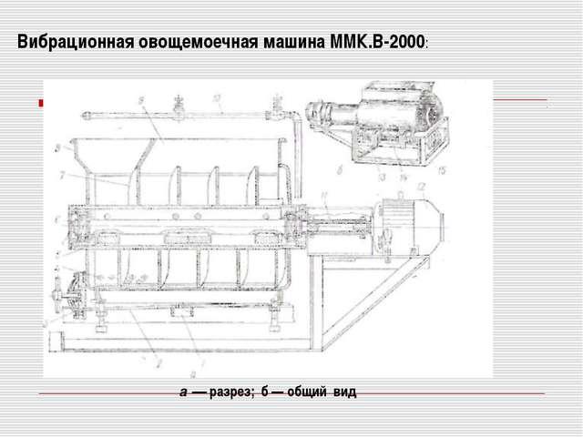 Вибрационная овощемоечная машина ММК.В-2000: а — разрез; б — общий вид