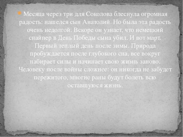 Месяца через три для Соколова блеснула огромная радость: нашелся сын Анатолий...