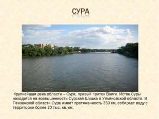 Крупнейшая река области – Сура, правый приток Волги. Исток Суры находится на