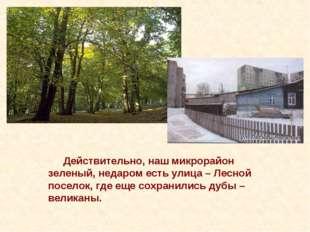 Действительно, наш микрорайон зеленый, недаром есть улица – Лесной поселок, г