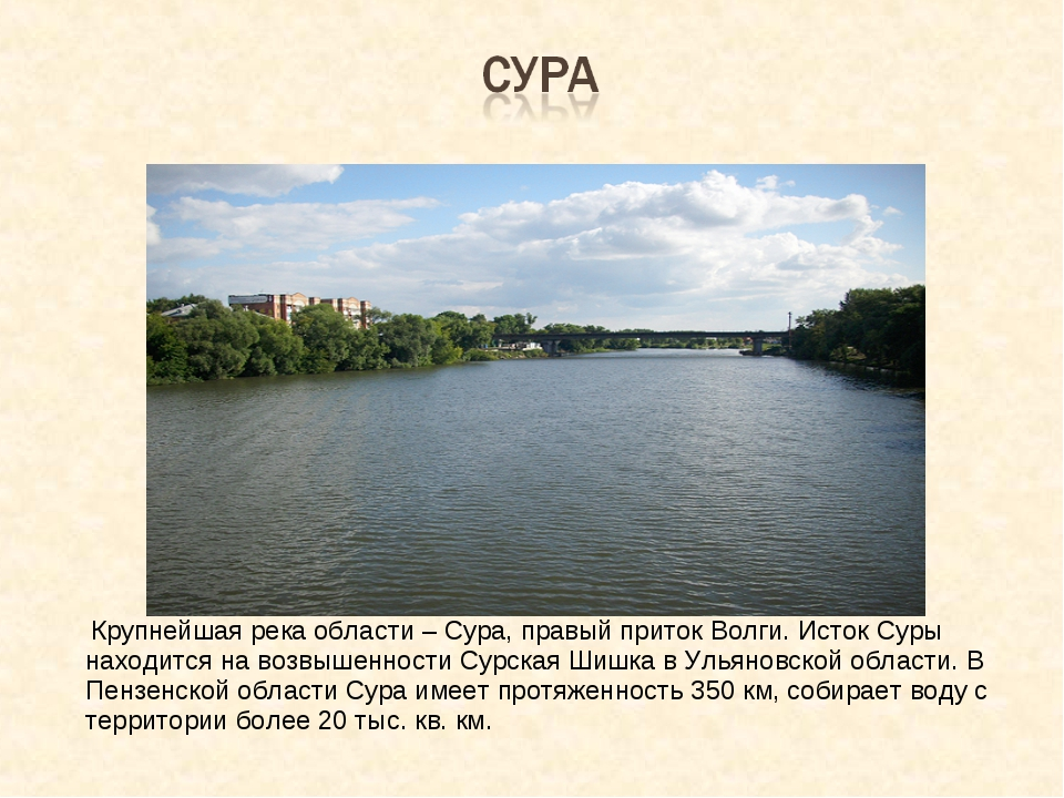 Крупнейшая река области – Сура, правый приток Волги. Исток Суры находится на...