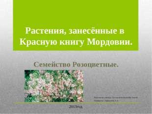 Выполнила ученица 11 класса Большакова Ксения. Проверила Парашкина Н.А. Раст