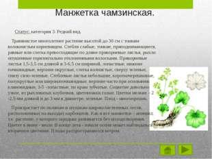 Меры по защите. Лимитирующими факторами являются – вырубка лесов и распашка с