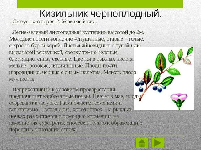 Местоположение вида. Евразийский степной и лесостепной вид с широким ареалом....