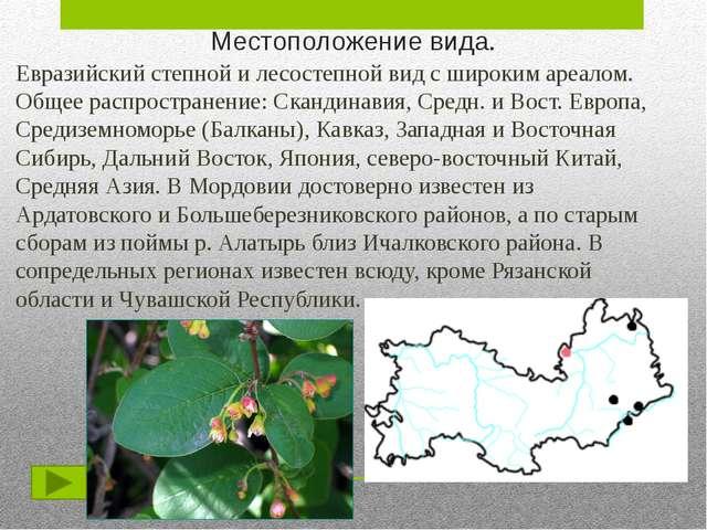 Защита данного вида. Нарушение естественных местообитаний происходит в резуль...