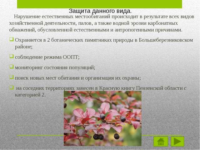 Распространение. Центрально-восточноевропейский лесной вид, спорадически расп...