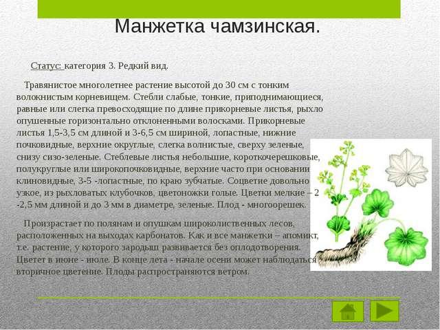 Меры по защите. Лимитирующими факторами являются – вырубка лесов и распашка с...