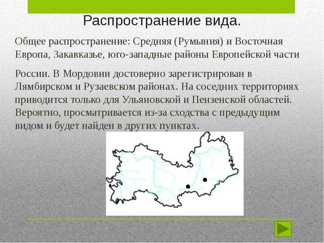 Распространение вида. Общее распространение: Средняя (Румыния) и Восточная Ев...