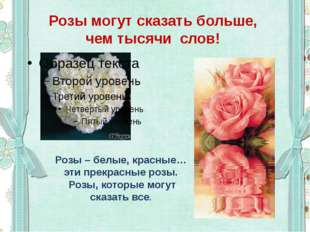 Розы могут сказать больше, чем тысячи слов! Розы – белые, красные… эти прекра