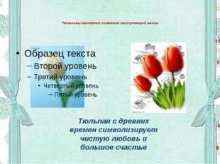 Тюльпаны являются символом наступающей весны Тюльпан с древних времен символ