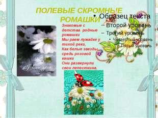 ПОЛЕВЫЕ СКРОМНЫЕ РОМАШКИ Знакомые с детства родные ромашки Мы рвем лужайке у