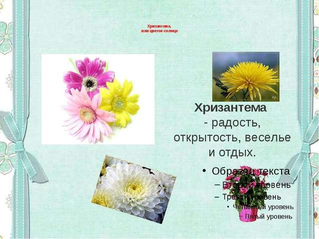 Хризантема, или цветок-солнце Хризантема - радость, открытость, веселье и от...