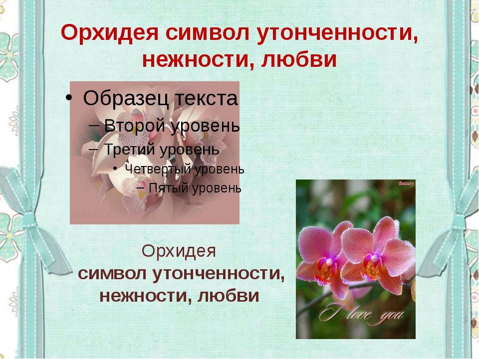 Орхидея символ утонченности, нежности, любви Орхидея символ утонченности, неж...