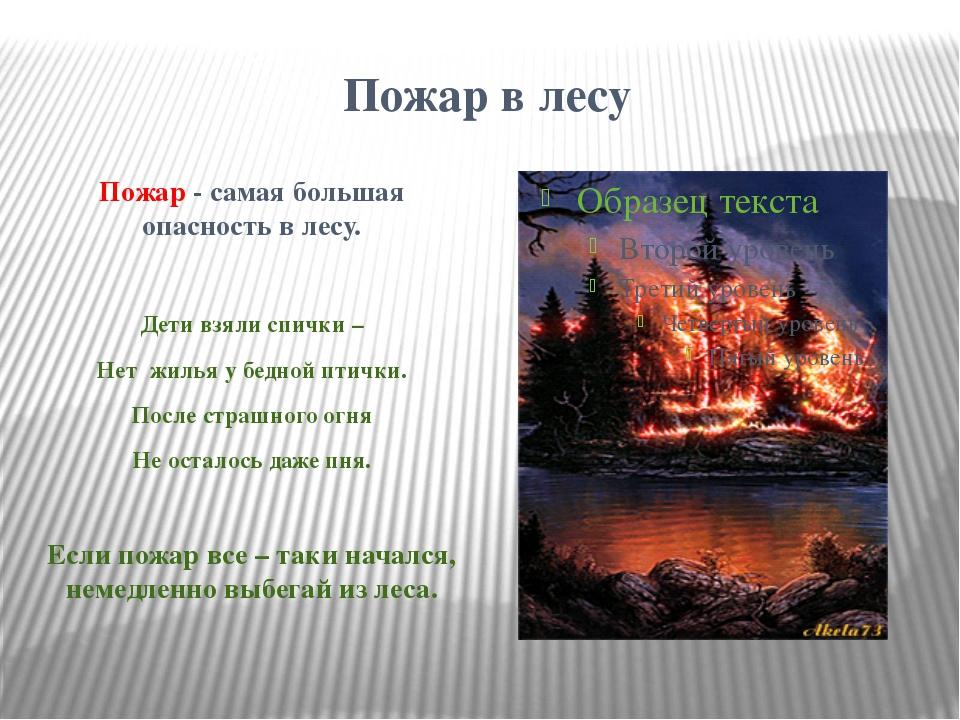 Пожар в лесу Пожар - самая большая опасность в лесу. Дети взяли спички – Нет...